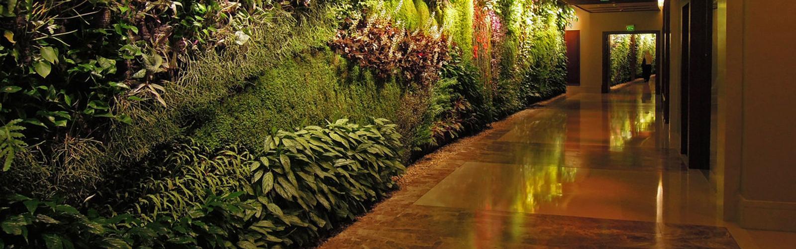 Garden Wall Designs