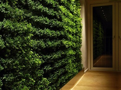 Green Walls NYC