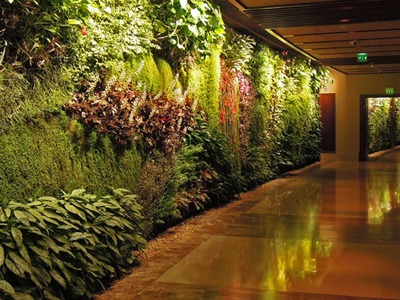 Green wall landscape vertical garden designs new york for Landscape design new york