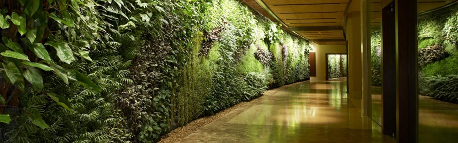 Green Wall Landscape